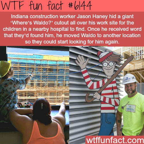 fun facts is a blog for interesting & funniest facts. We post about health, celebs/people,...