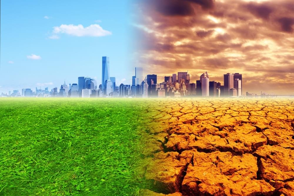 Learn What To Do If A Disastrous SUPER DROUGHT Hits Us