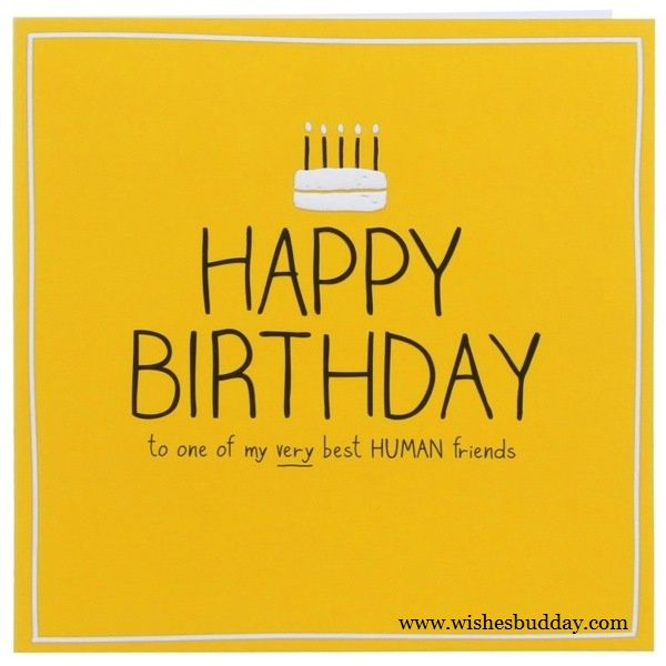 Birthday Wishes For Your Best Friends With Cute Images: Birthday Wishes For Special Buddy Of Your Life / Best