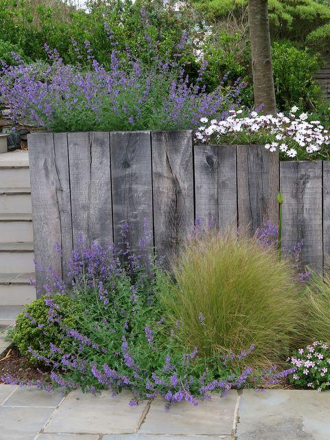 Garden Design By Cornwall Designer Based In Falmouth North Cornwall Garden Cornwall Garden Garden Design Seaside Garden