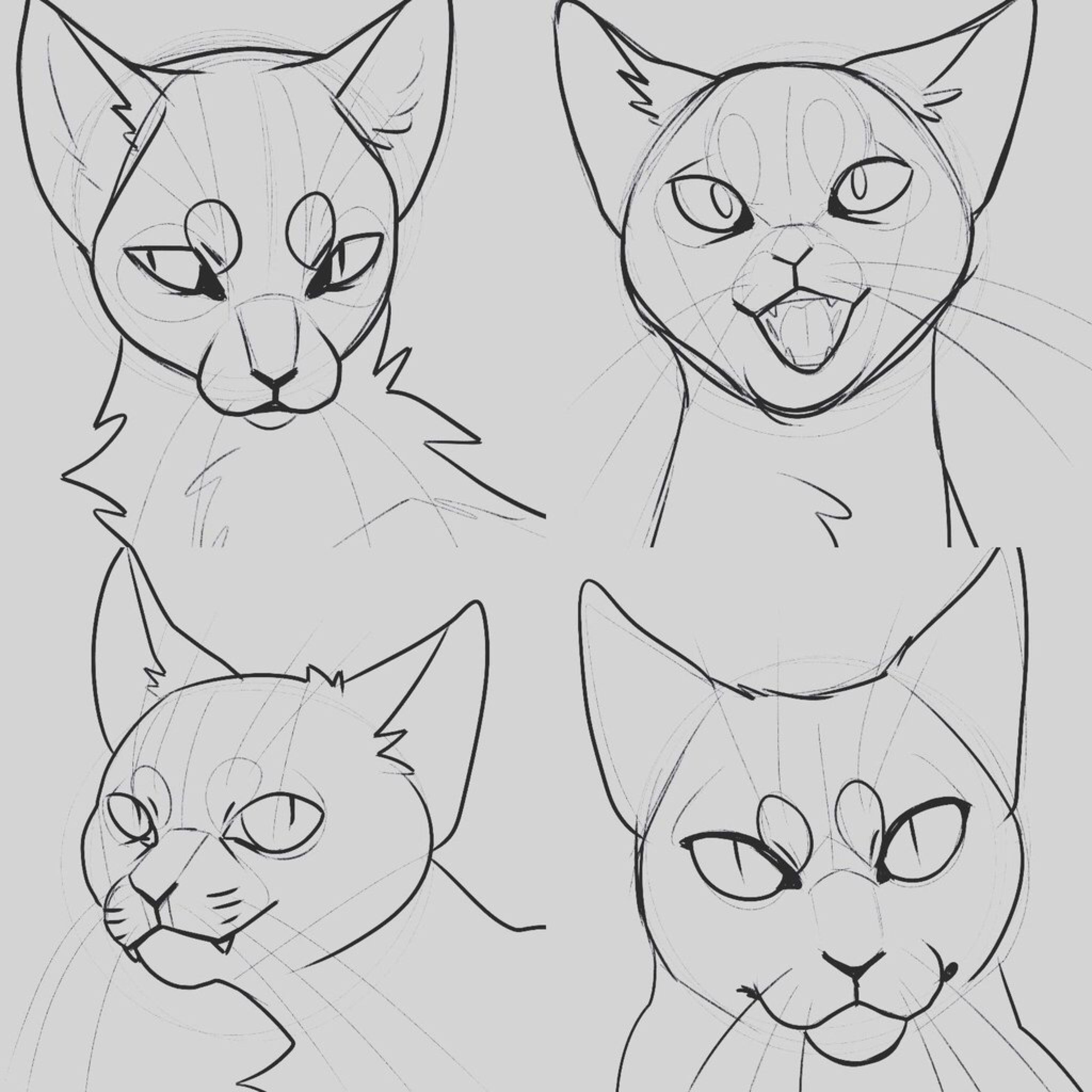 Cat Style Study By Uoneko On Deviantart With Images Cat Face