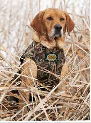 New Sporting Duck Hunting Blind Jacket Neoprene Camouflage Dog