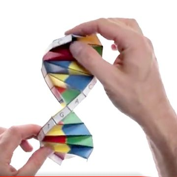 Interactive DNA Timeline | teaching | Pinterest | Tools, Dna and ...