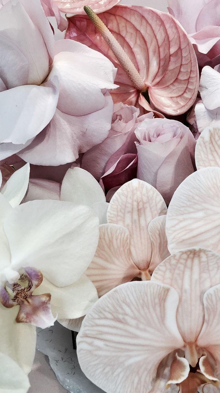Blumenstrauss in Pastell: Callas, Orchideen und Rosen #blumenstrauss #rosen #cal...,  #Blumenstrauß #cal #Callas #Hintergrundpastell #Orchideen #Pastell #Rosen #und