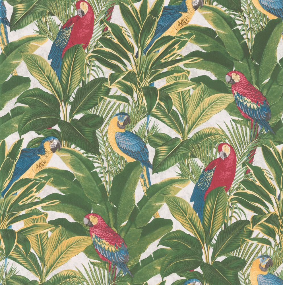 Parrots & Palms Red, Yellow & Green Wallpaper By Albany