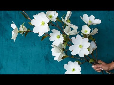 Video Tutorial Crepe Paper Dogwood Branches Paper Flowers