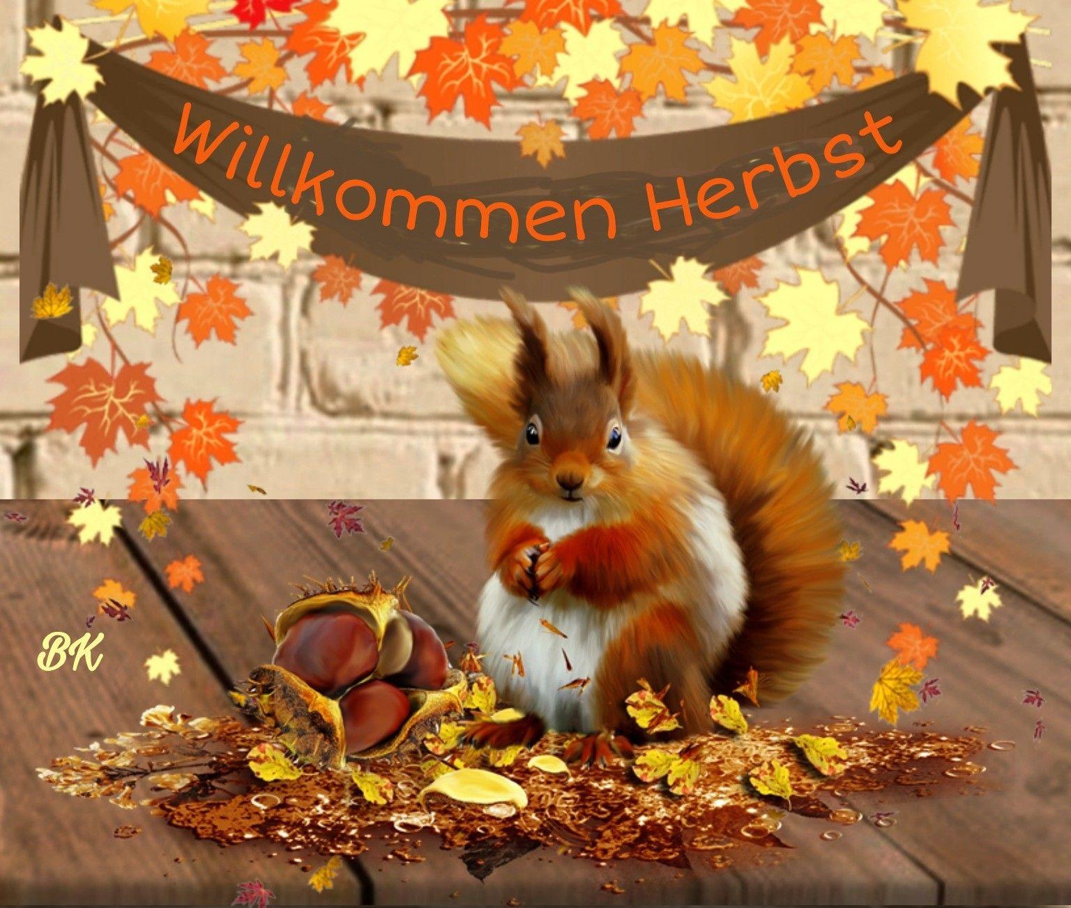 Willkommen Herbst | Willkommen herbst, Herbst, Jahreszeiten in 2021 |  Willkommen herbst, Herbst, Jahreszeiten