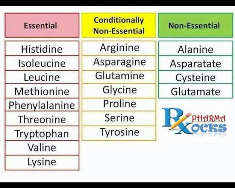 Amino Acid Classification Smarts Pinterest Chemistry, School - amino acid chart