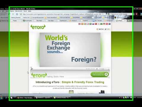 What trading program should i use for forex