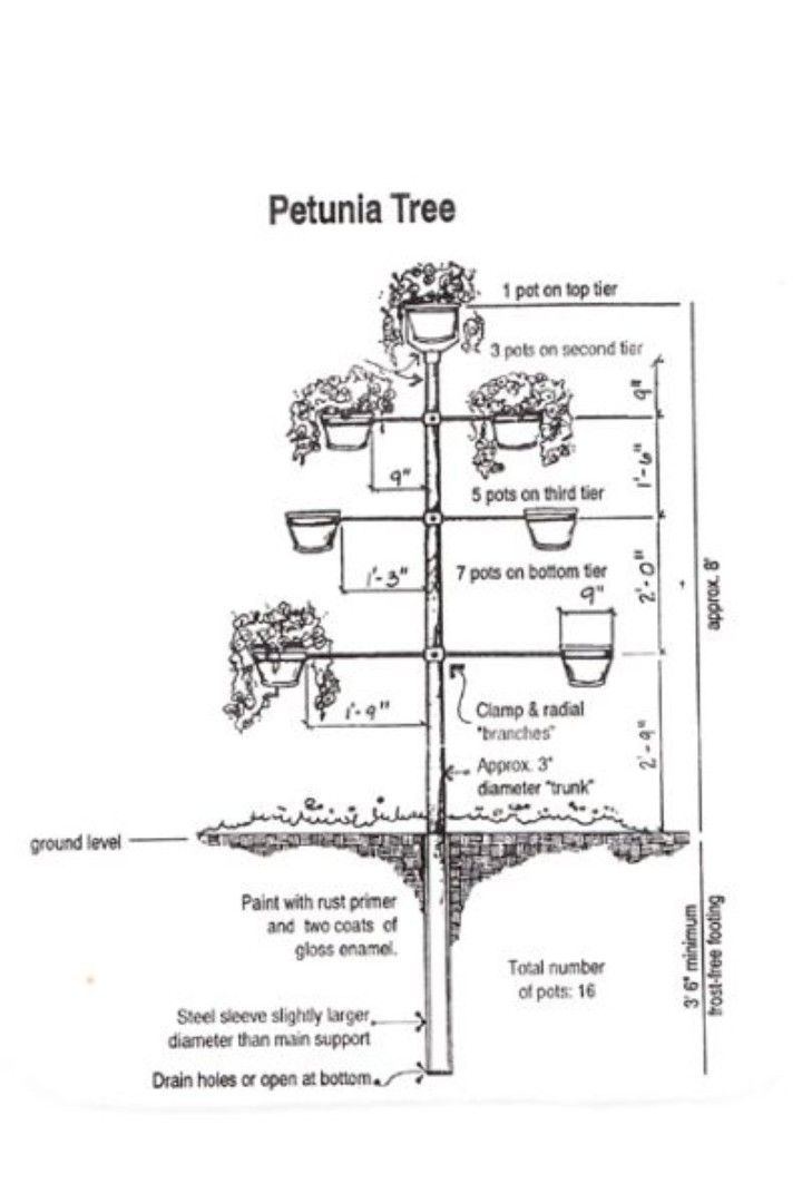 Petunia tree vertical section build this petunia tree plans and petunia tree vertical section build this petunia tree plans and directions ccuart Choice Image