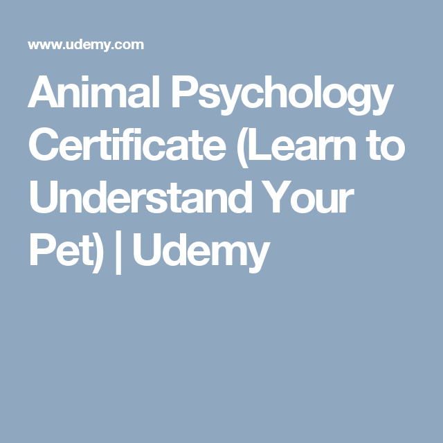 Animal Psychology Certificate (Learn to Understand Your Pet) | Udemy ...