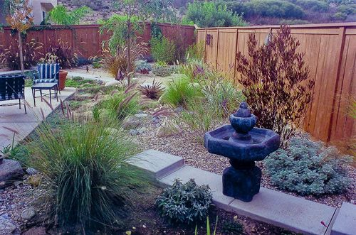 Drought Tolerant Backyard Designs very drought tolerant low maintenance and year round beautiful garden mediterranean Drought Landscaping Ideas Drought Resistant Landscaping