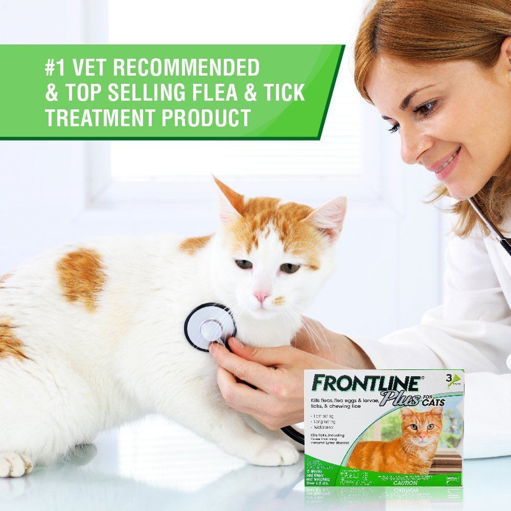 Clearance Frontline Plus For Cats 8 Weeks Up 6 Months Supply Merial Green Box Cat Fleas Frontline Plus For Cats Flea And Tick