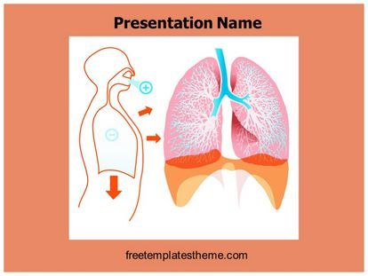 Download free lungs powerpoint template for your powerpoint download free lungs powerpoint template for your powerpoint presentation this free lungs ppt template is used by many professionals toneelgroepblik Gallery