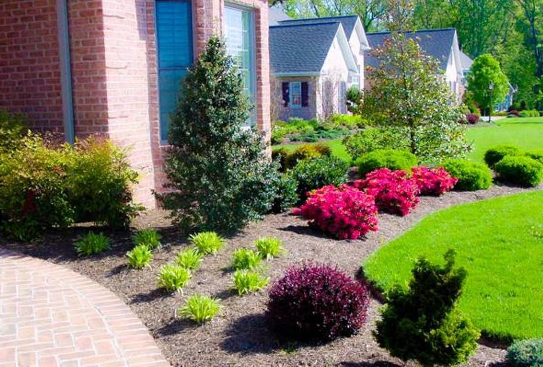 Good front yard landscaping plants landscaping and for Good garden ideas