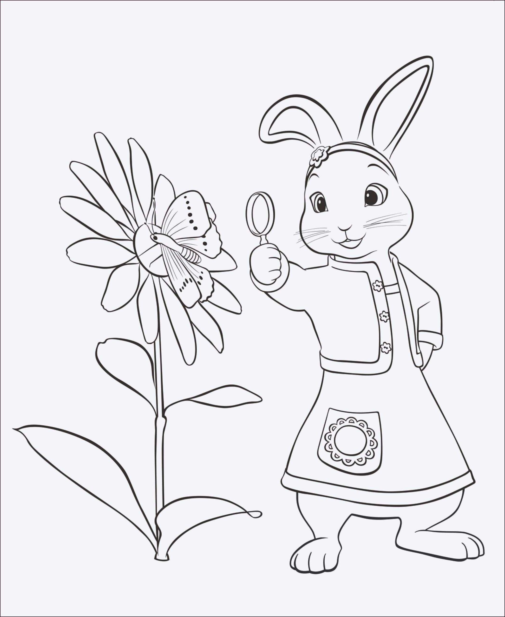 Ten Großartig Malvorlage Kaninchen Ausdruck 17  Ausmalbilder