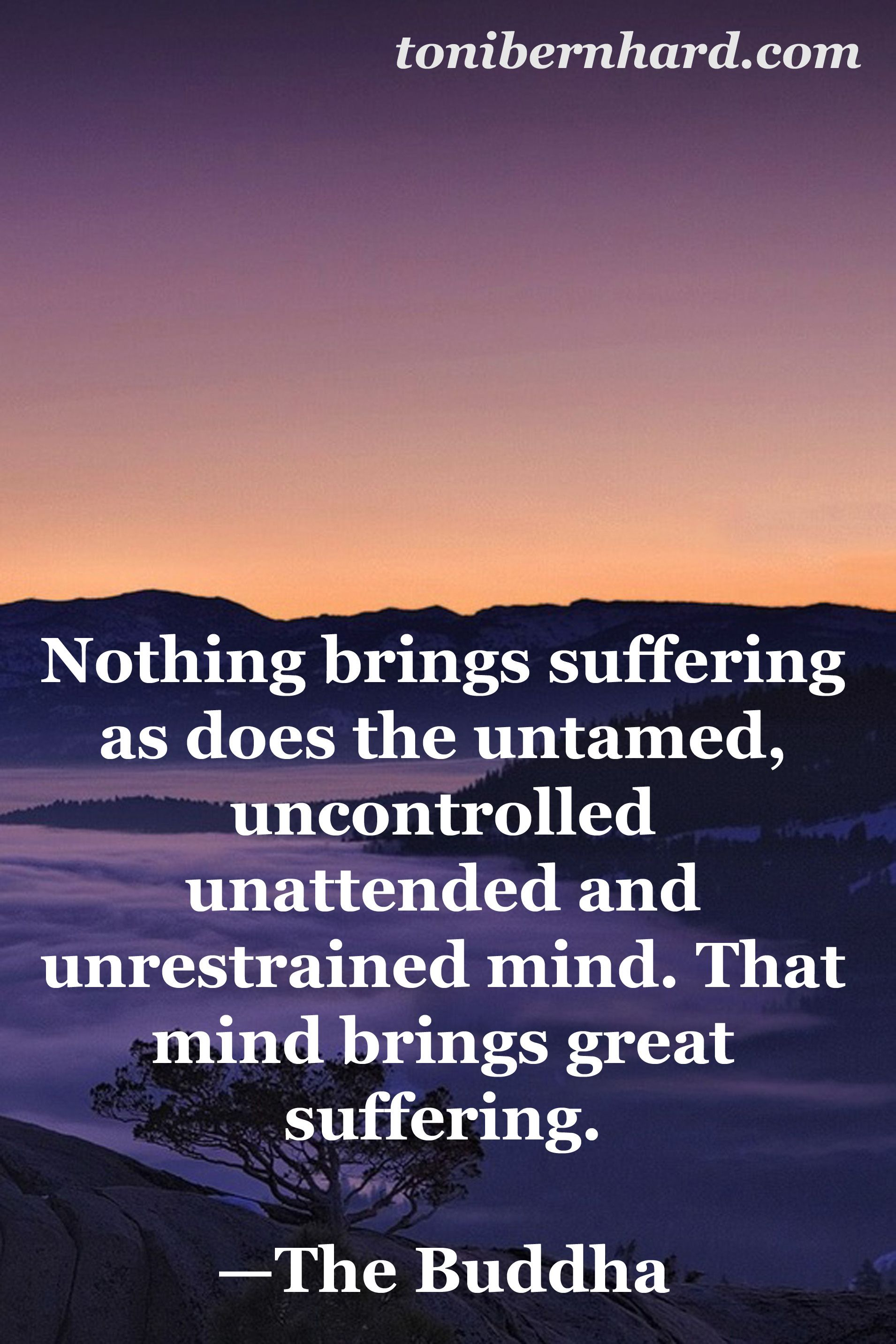 Buddha Life Quotes The Buddha On What Brings Sufferingquoteswisdomadvice