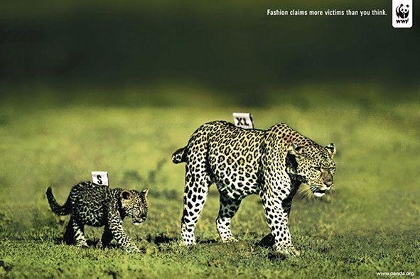WWF_adv
