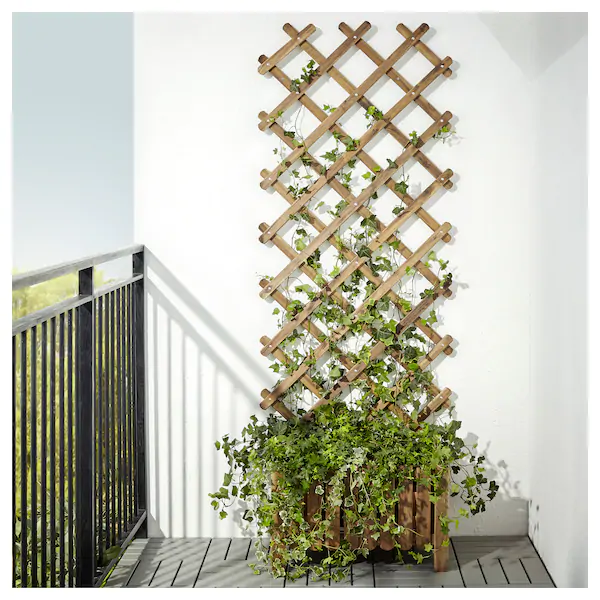 Photo of ASKHOLMEN Flower box with trellis, outdoor, gray-brown stained – IKEA