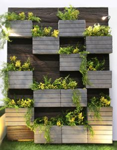 Wooden Planters Bolted To Wall