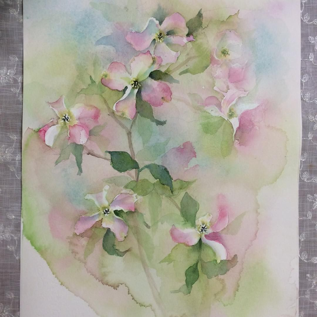 ハナミズキ Watercolor Watercolorpainting Watercolors Flowers