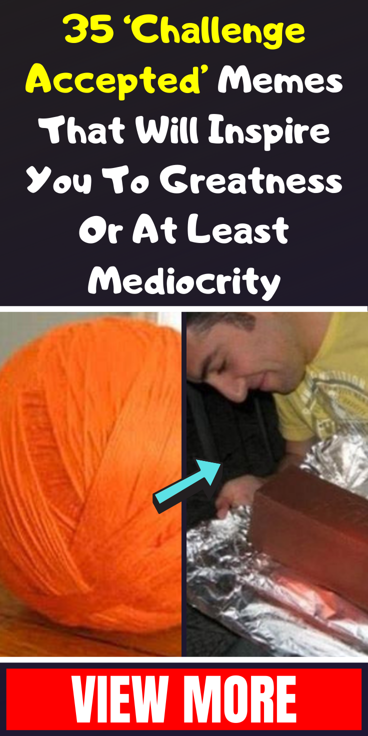 35 Challenge Accepted Memes That Will Inspire You To Greatness Or At Least Mediocrity Funny Inspirational Quotes Funny Quotes In Hindi Fashion Trends Winter