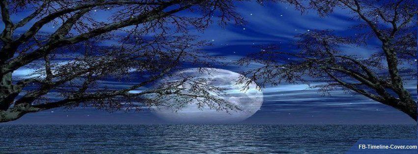 Moon Lake Trees And Stars
