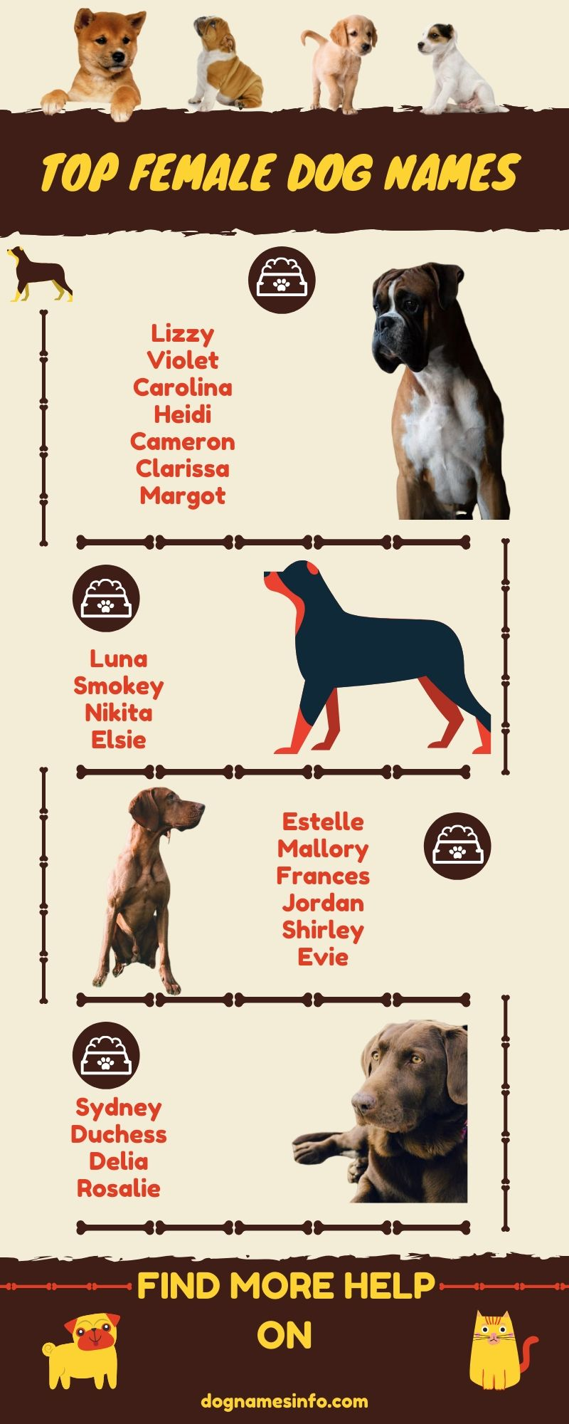 Unique Female Dog Names 2020 250 Popular Girl Puppy Names Ideas In 2020 Unique Female Dog Names Dog Names