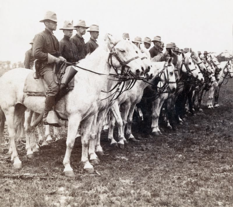 Troop 1 6th U S Cavalry Camp Tampa Stereoview