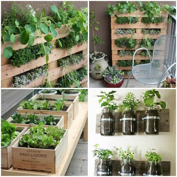 1000 images about Balcony Gardening on Pinterest Gardens