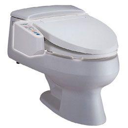 Handicap Toilet Seat Hometech Bidet Spa Toilet Seat From