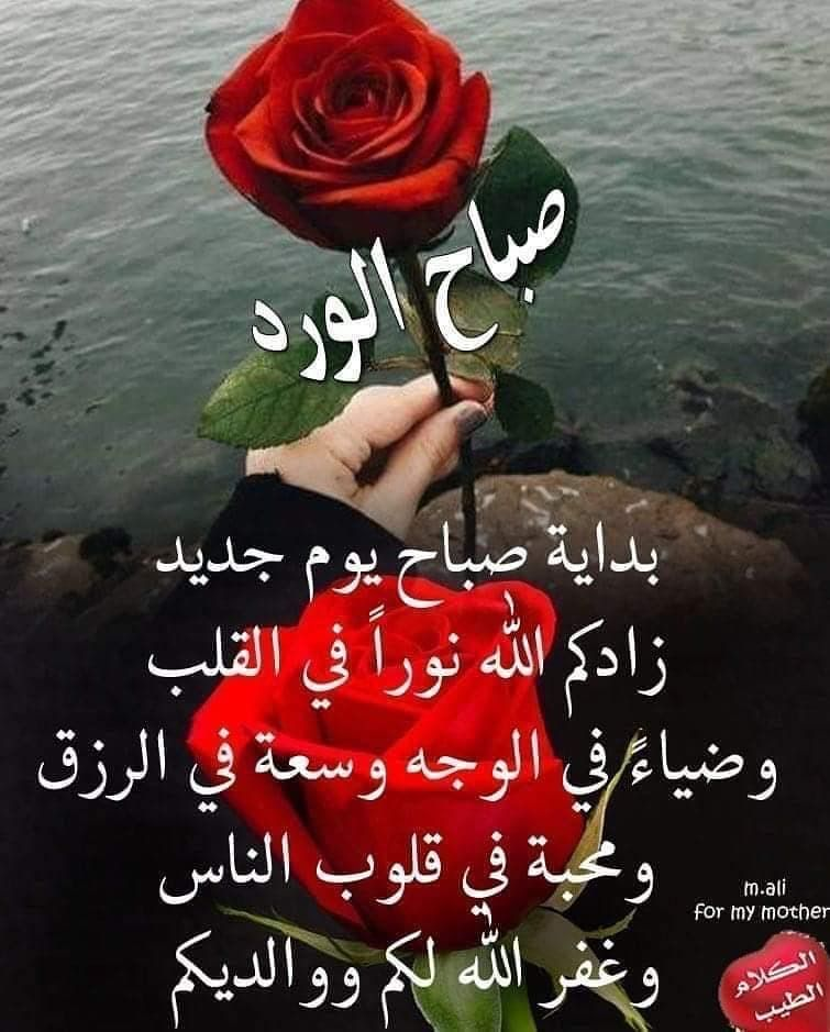 Pin By Rabea Kouache On اسماء الله الحسنى Christmas Bulbs Christmas Ornaments Novelty Christmas