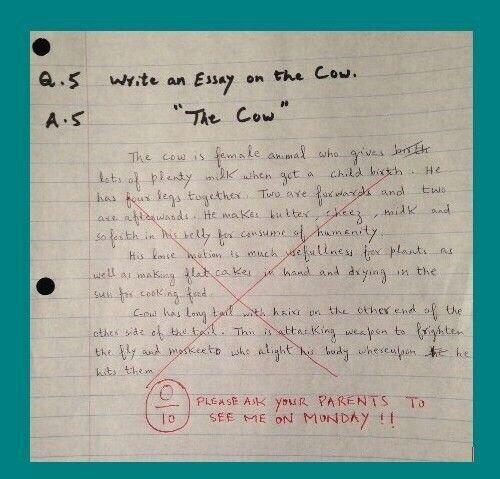 Short funny essays