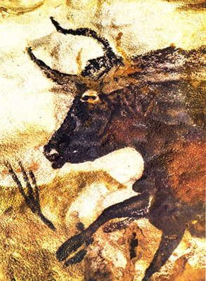 Great Black Bull lascaux  1b5ab5f5aca