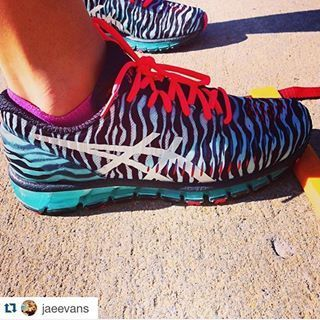 asics womens zebra
