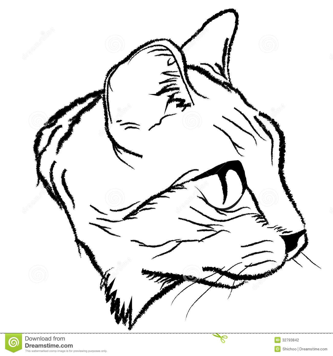 Line Drawing Of A Cat Face : Cat face illustration draw design by