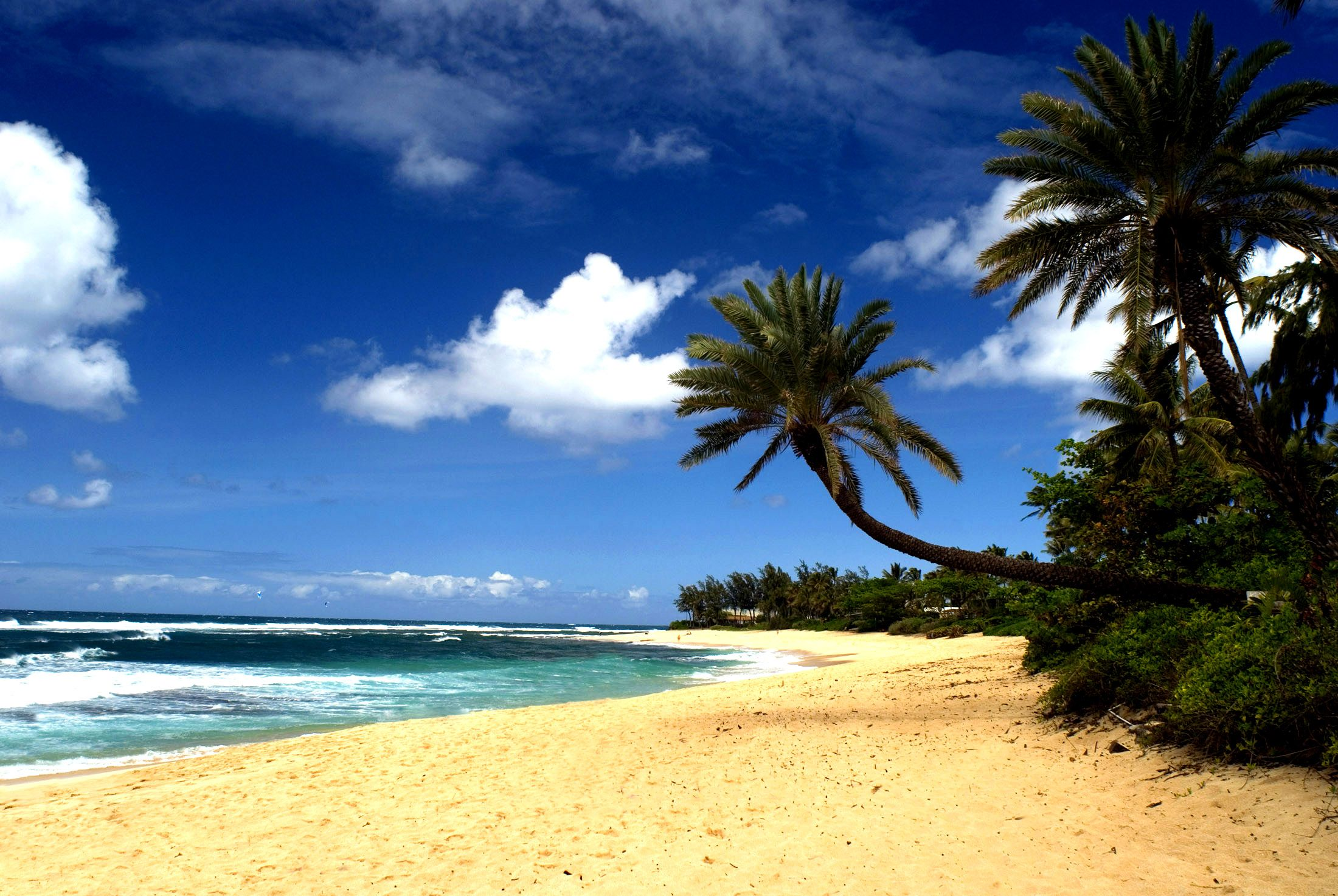 Oahu beach chair rental hawaii beach time - Hawaiian Beaches Hawaiian Beach Sand