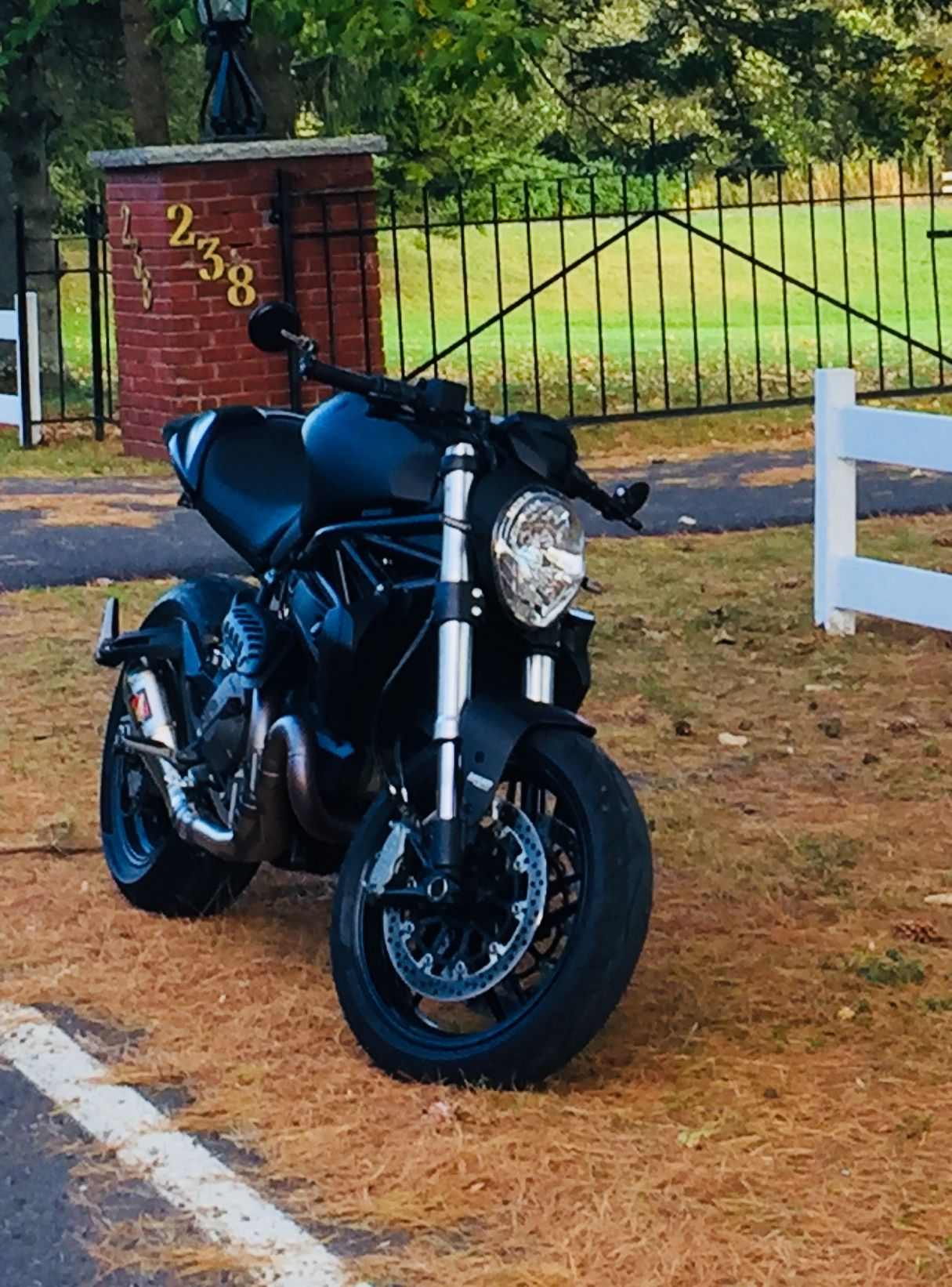 Ducati Monster 821 Custom