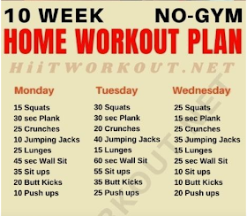 home workout plan for beginners at home monday 20 squats