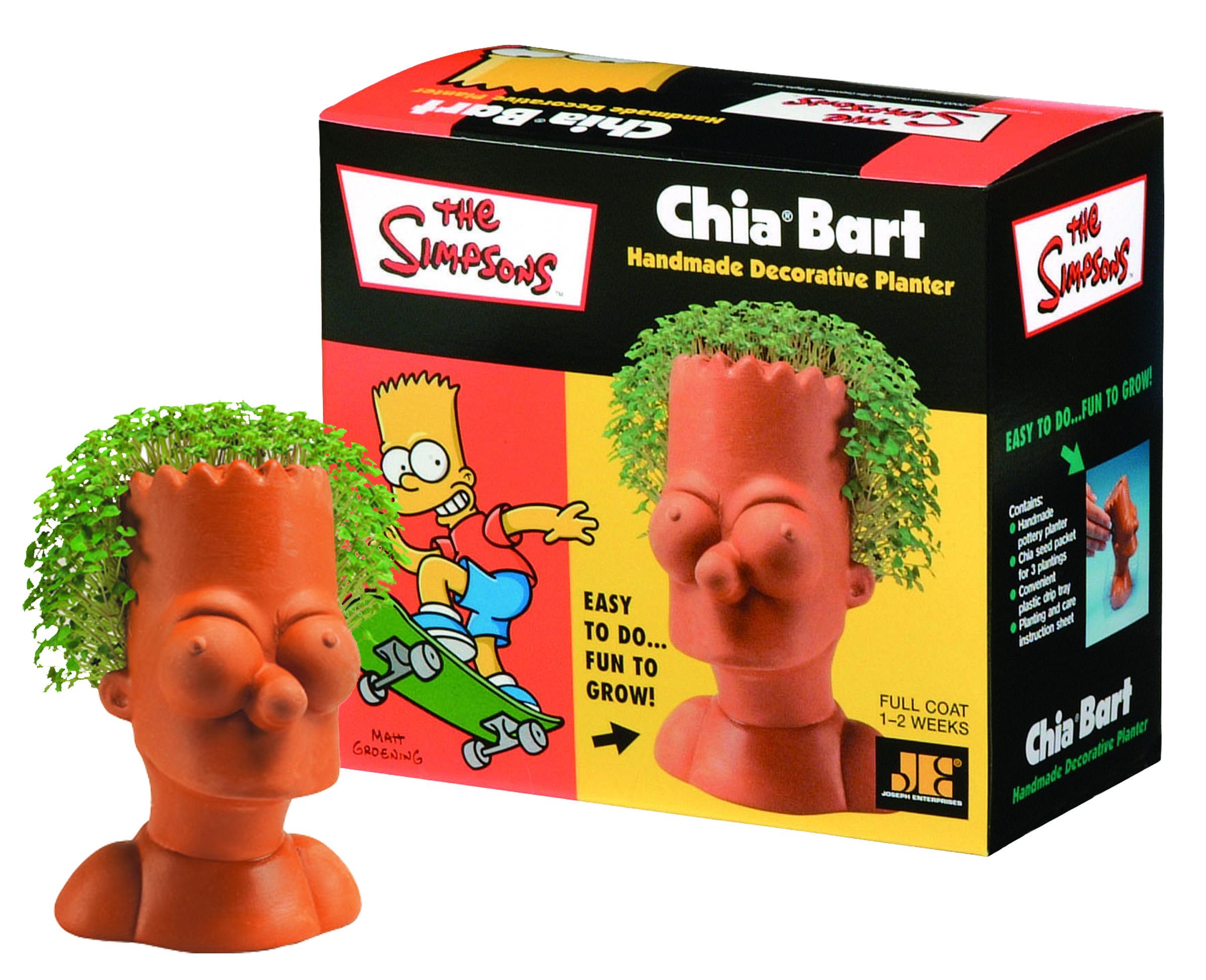 Chia Bart Simpson Chia Pet The Simpsons Birthday Fun