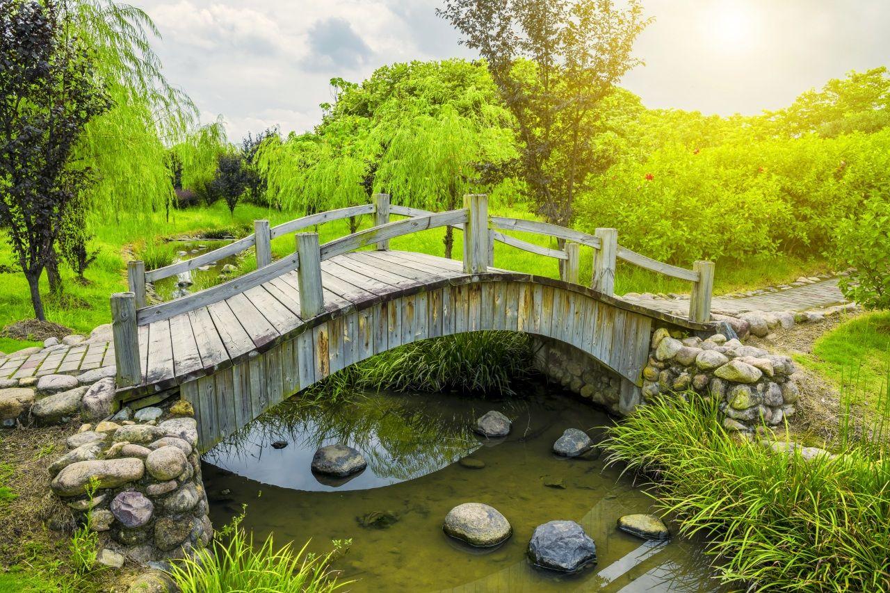 R os puentes piedras estanque rboles naturaleza for Estanque ecologico