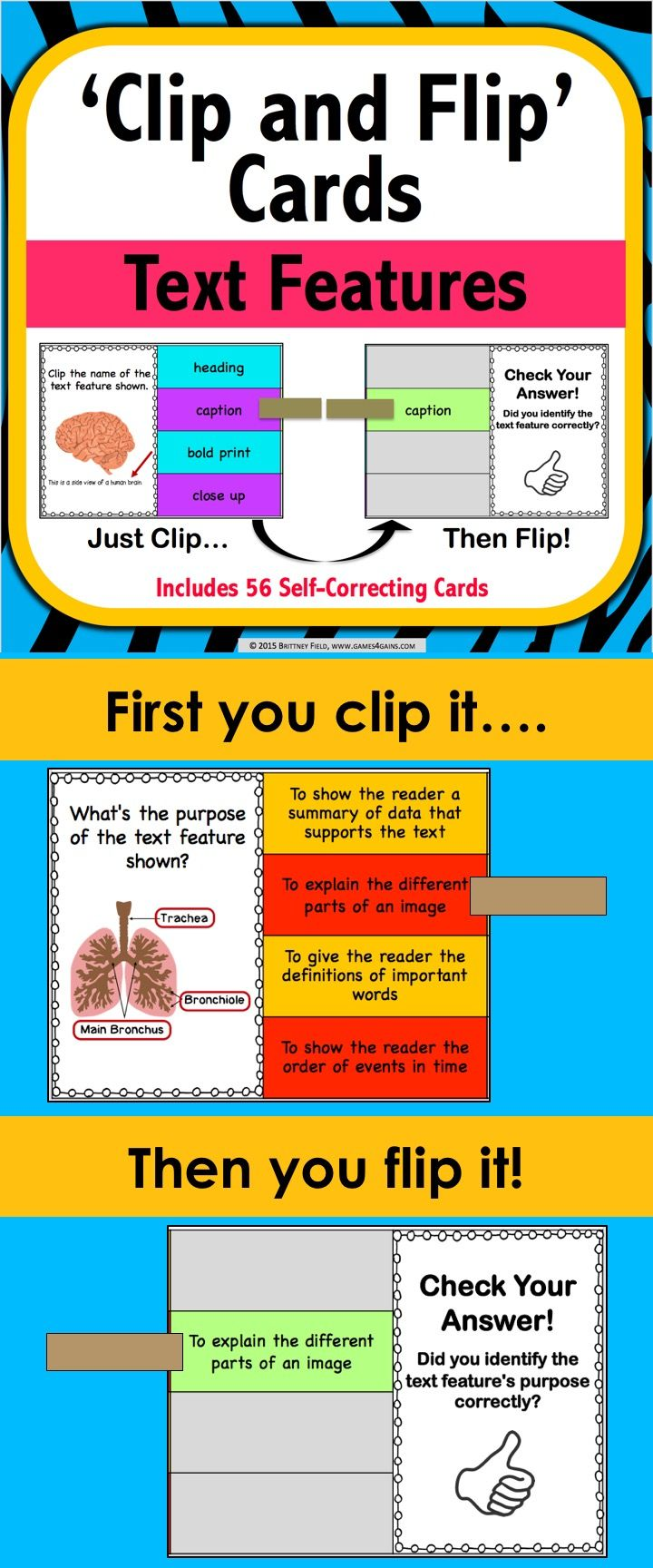 different features of curriculum
