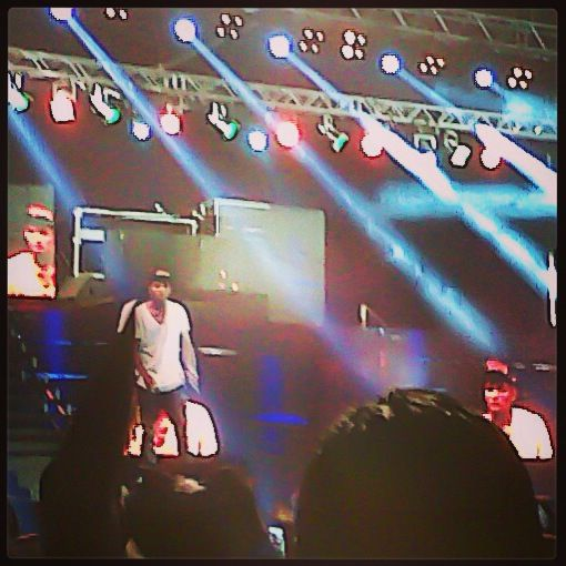 Chris Brown concert in Ghana on March 5, 2013