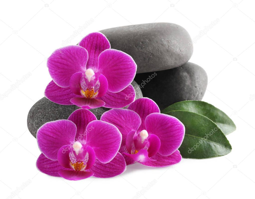 Pile Of Spa Stones And Orchid Flowers On White Background Stock Photo Aff Stones Orchid Pile Spa Ad Orchid Flower White Background Photo Orchids