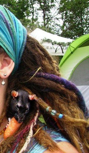 A rat in her hair??