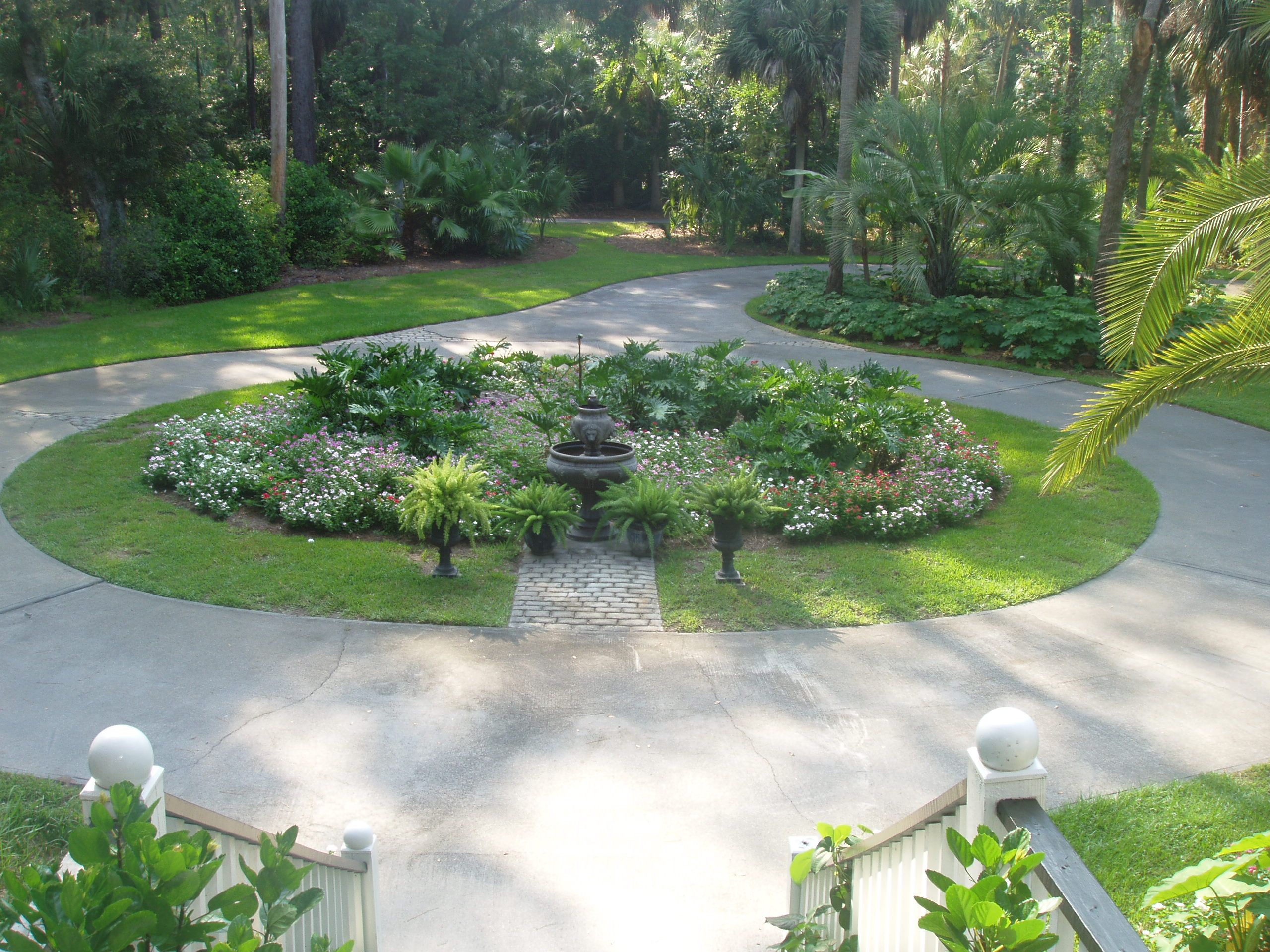 quirky landscaping driveway idea using green garden and big tree