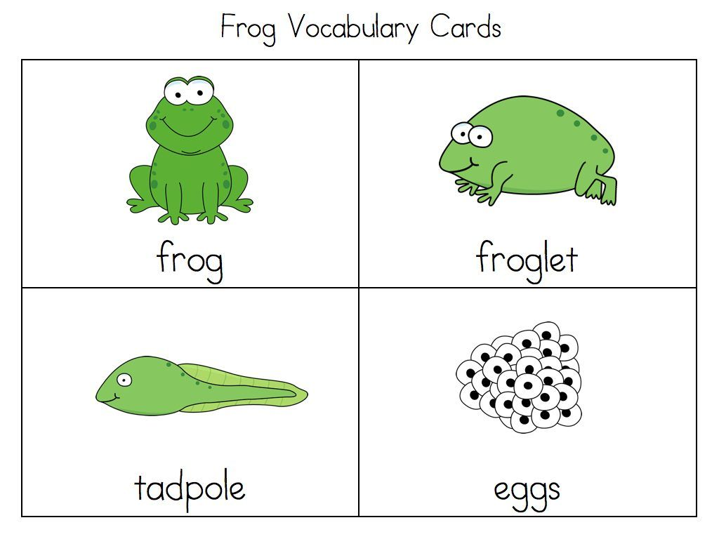 Worksheets Frog Life Cycle Worksheet frog cycle activities all about life preschool activities