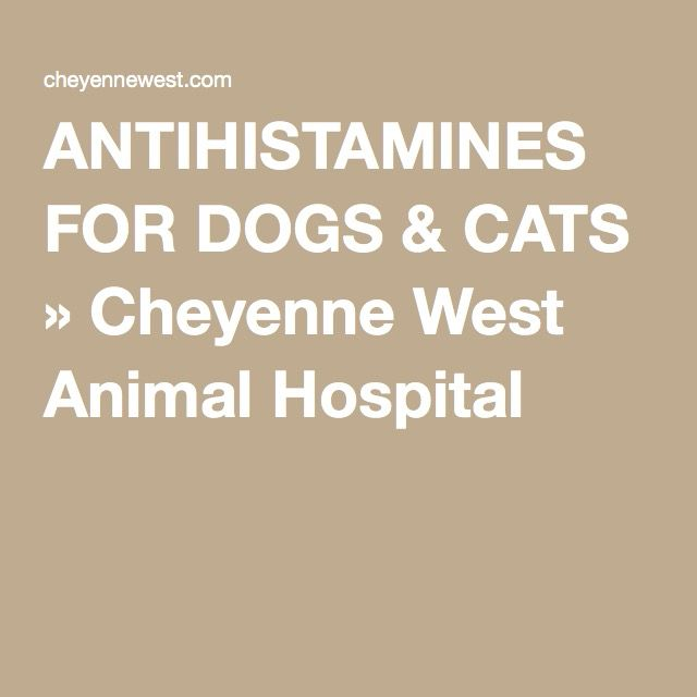 ANTIHISTAMINES FOR DOGS & CATS » Cheyenne West Animal