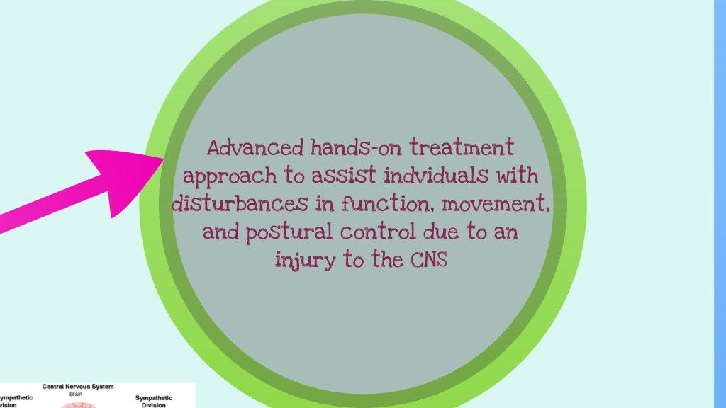 Neurodevelopmental Frame of Reference   Therapy, Pediatric ot and ...