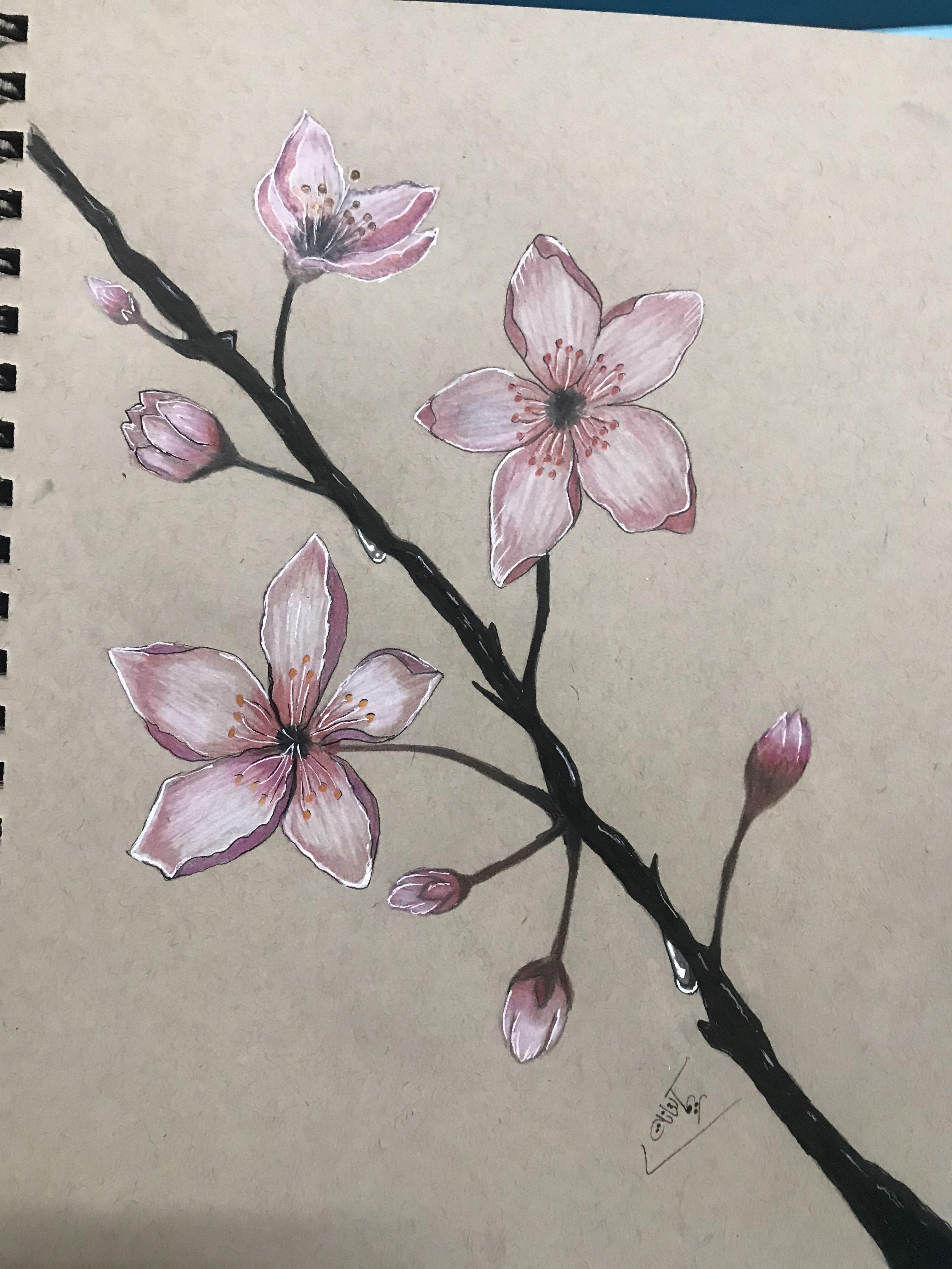 Haw To Draw Flowers With Vase تعليم الرسم رسم مزهرية ورد بخطوات جد Enamel Pins Cute Unique